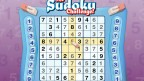 The Sudoku Challenge! (2005)