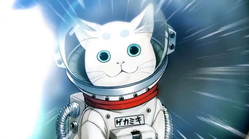 Новый трейлер Sakura Revolution посвятили девушкам и котику