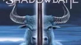 Shadowbane еще поборется!
