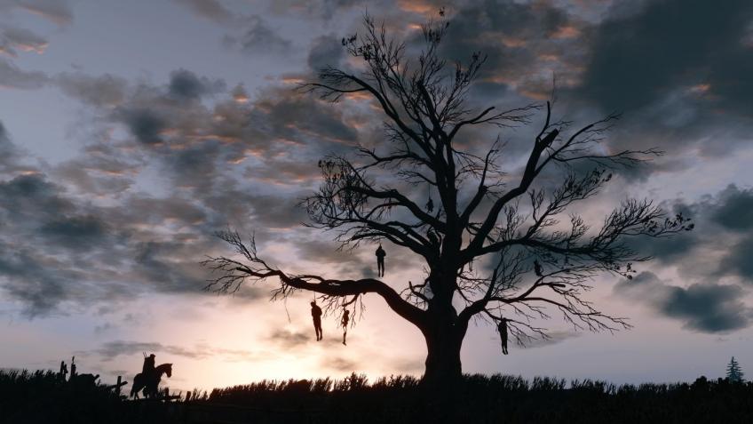 Польский код: в «Ведьмаке 3» на PS4 Pro начали пропадать деревья
