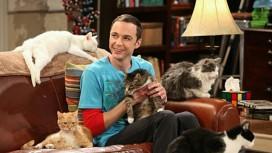 Иск об использовании песни про котенка в «Теории большого взрыва» отклонили