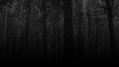 Платформер The Missing автора Deadly Premonition выйдет до конца года