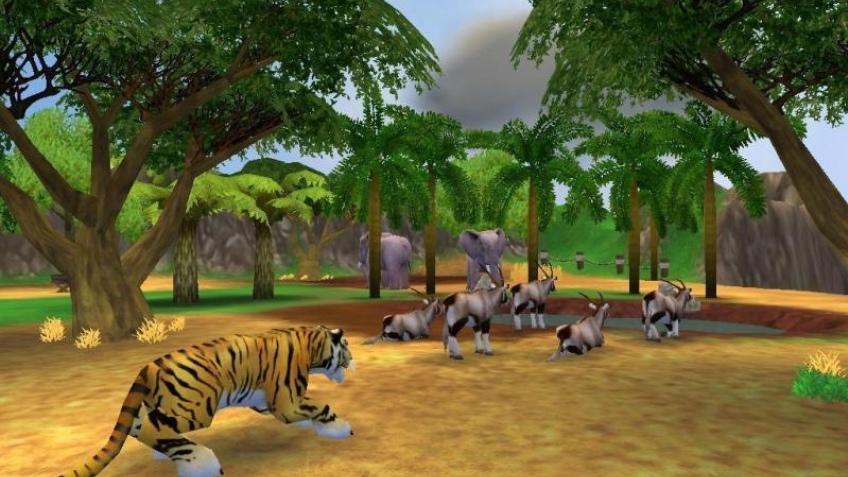 Новички в зоопарке