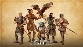 Для Pillars of Eternity 2: Deadfire началось закрытое тестирование