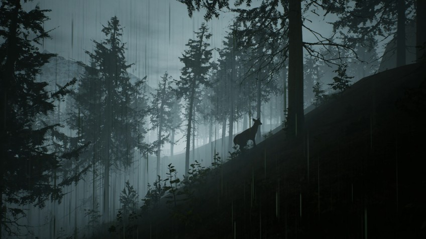Вегетарианцы на охоте: анонсирована Morels: The Hunt