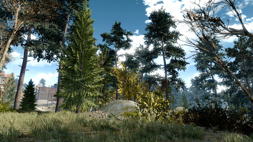 Энтузиаст добавил в Fallout 4 ещё 18 тысяч деревьев1