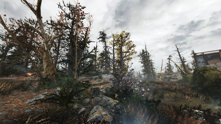 Энтузиаст добавил в Fallout 4 ещё 18 тысяч деревьев2