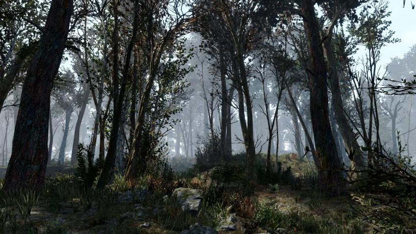 Энтузиаст добавил в Fallout 4 ещё 18 тысяч деревьев3