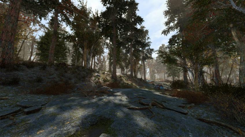 Энтузиаст добавил в Fallout 4 ещё 18 тысяч деревьев4