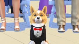 Редактор животных в The Sims4 поможет игрокам создать уникальных питомцев