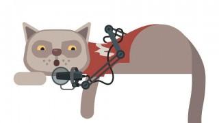 Игромания дарит своим читателям кота для симулятора while True: learn()