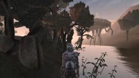 Идеи Morrowind возродятся в Skyrim