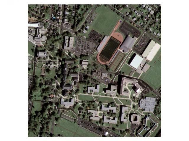 Спутник Google приступил к фотографированию планеты