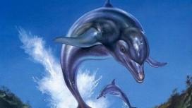 Создатель Ecco the Dolphin хочет возродить игру
