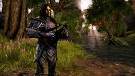 Консольные версии The Elder Scrolls Online могут перенести на следующий год