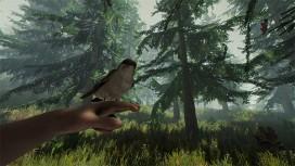 The Forest покидает ранний доступ