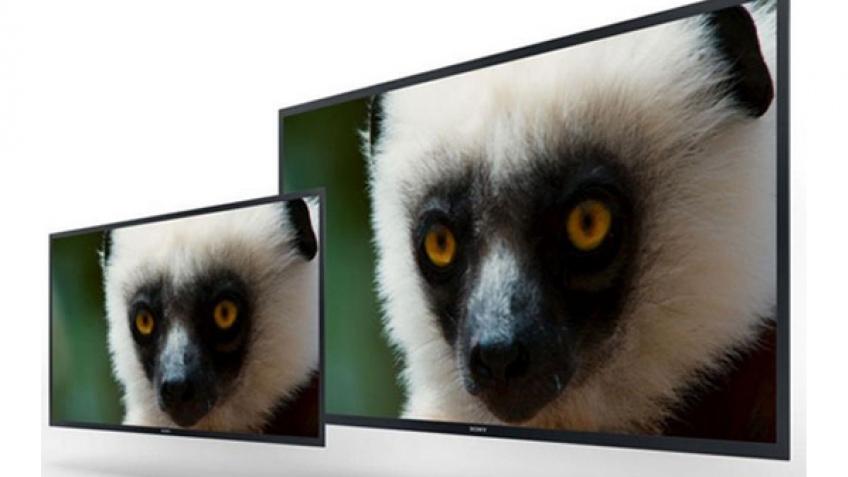 Sony продемонстрировала OLED-мониторы с разрешением Ultra HD