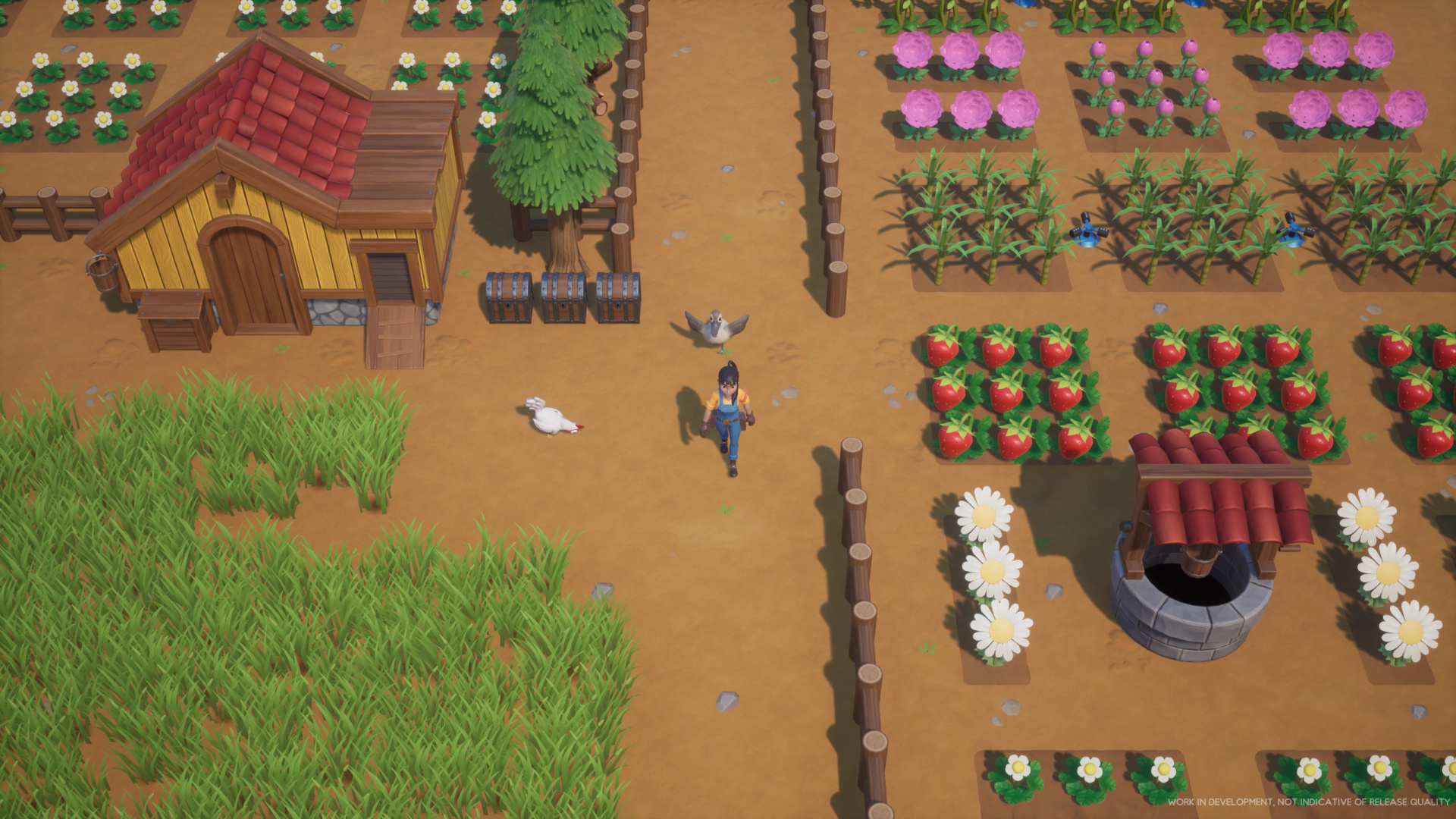 Симулятор фермы Coral Island выходит на Kickstarter в феврале