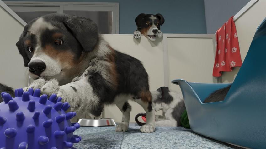 Польский ответ Nintendogs: анонсирован симулятор Dog Trainer