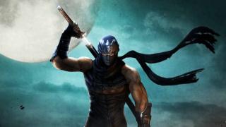 Разрешение в Ninja Gaiden на PC придётся менять через свойства Steam