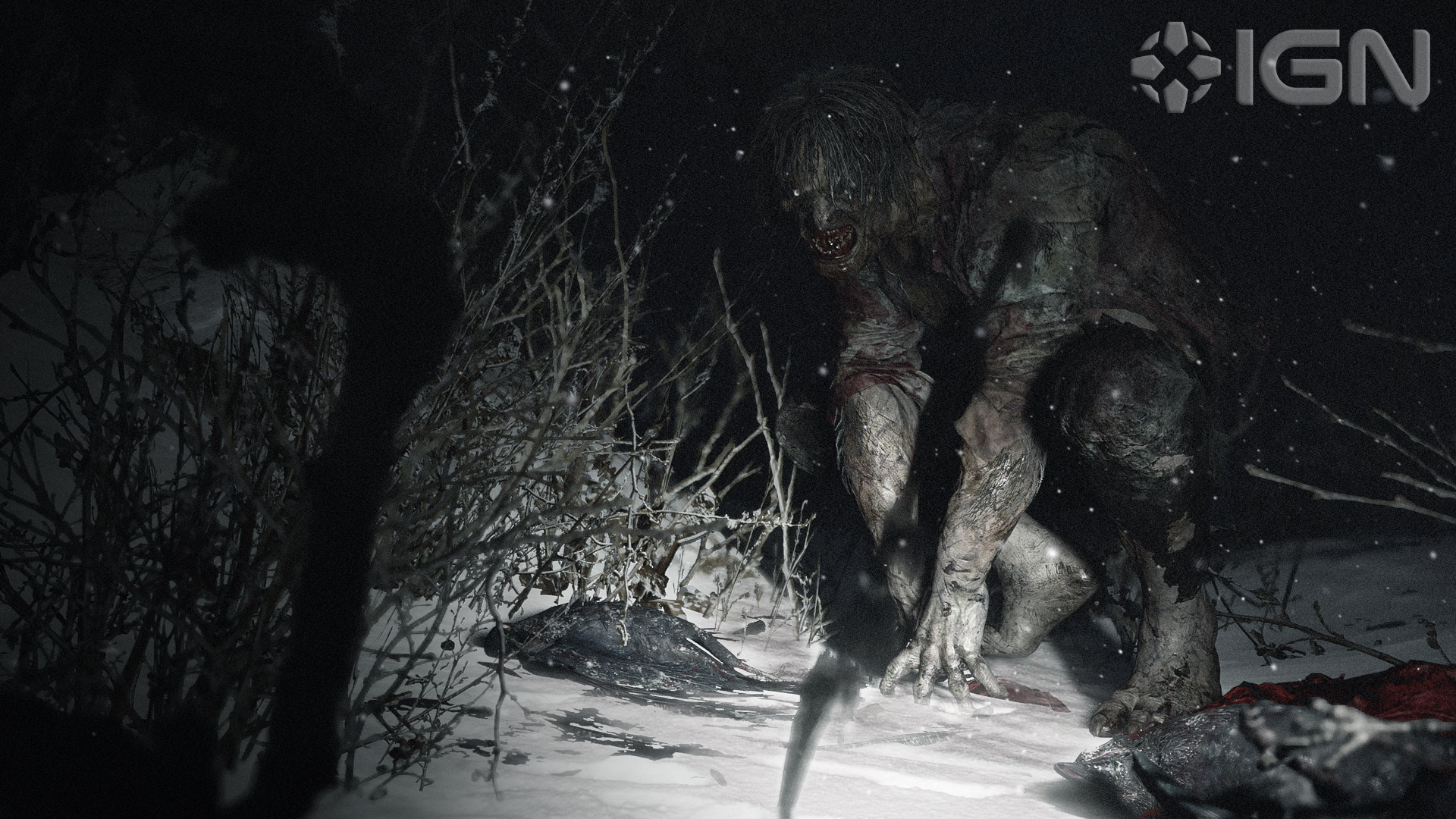 Capcom представила три свежих скриншота Resident Evil Village с монстрами
