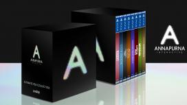 Annapurna Interactive начинает работать над собственной игрой