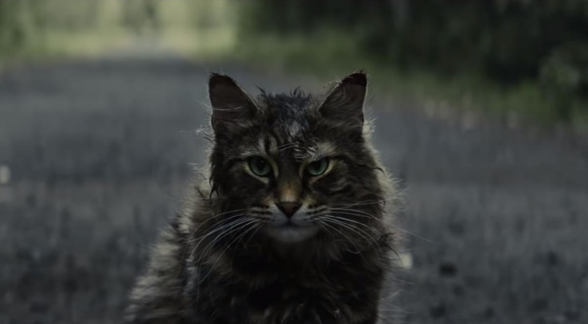 Вышел первый трейлер «Кладбища домашних животных»