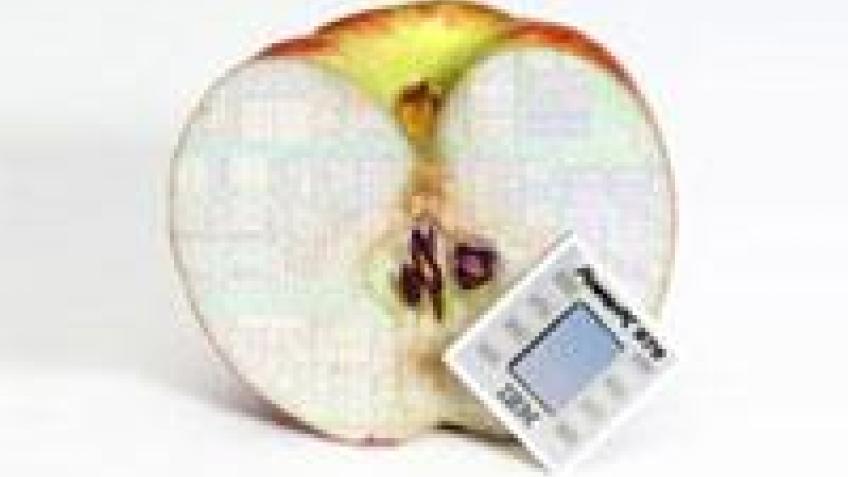 Приобретение PA Semi не повлияет на Apple?