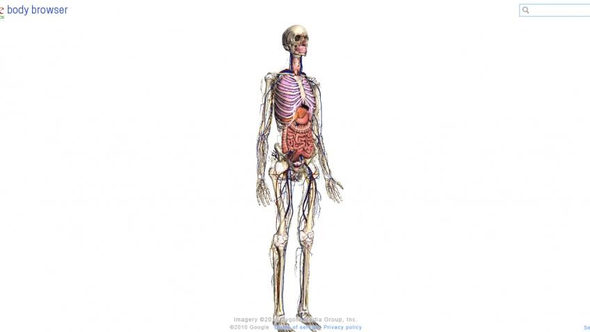 Браузер по человеческому телу имени Google