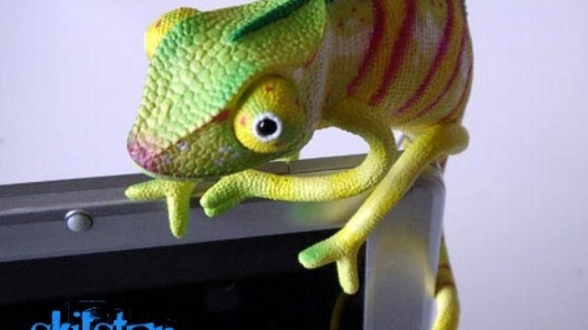 Страшненький хамелеон с интерфейсом USB