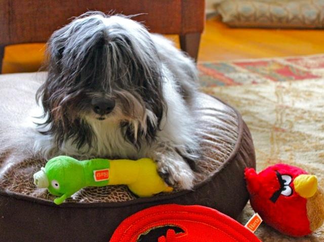 Автор игрушек для животных Angry Birds судится с партнером Rovio