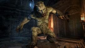 PC-версия Dragon's Dogma: Dark Arisen определит будущее серии