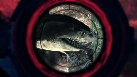 Акулы и десантники: у Helldivers и Depth — бесплатные выходные