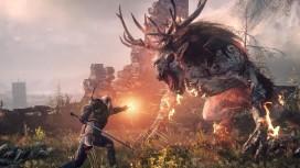 Дополнения для PC-версии The Witcher3 отдадут бесплатно