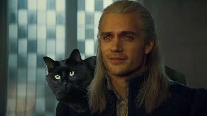 Канал OwlKitty показал, какой была бы жизнь Геральта, если бы у него был кот