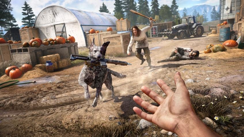 Авторы Far Cry5 показали коллекционное издание