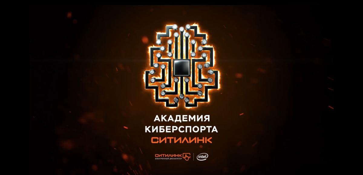 «Академия киберспорта Ситилинк» включится в королевскую битву