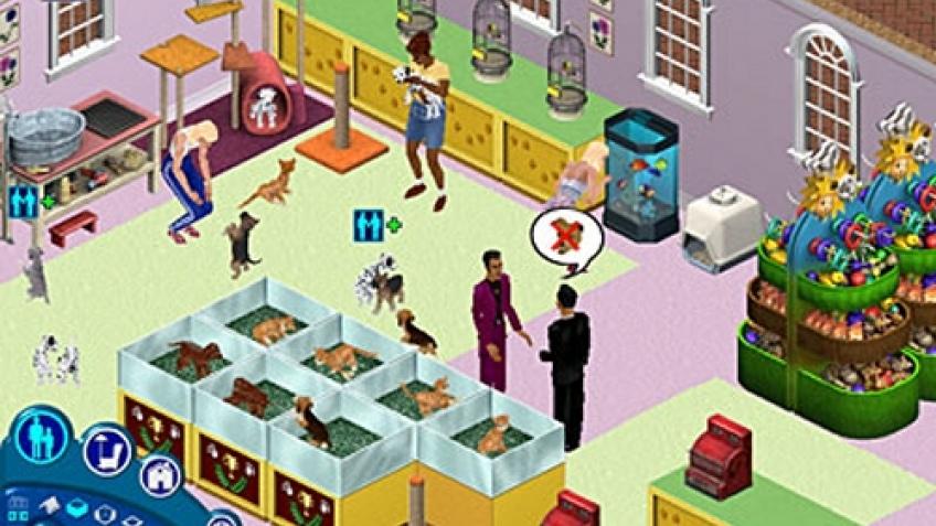 Дополнение The Sims