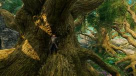 Медведи и дриады: авторы New World показали регион Edengrove