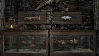 В праздничное издание The Elder Scrolls V: Skyrim добавят аквариумы