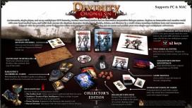 Коллекционное издание Divinity: Original Sin не будут продавать в России