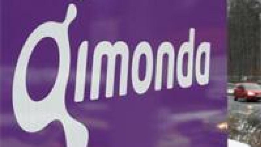 Qimonda в поисках инвестора