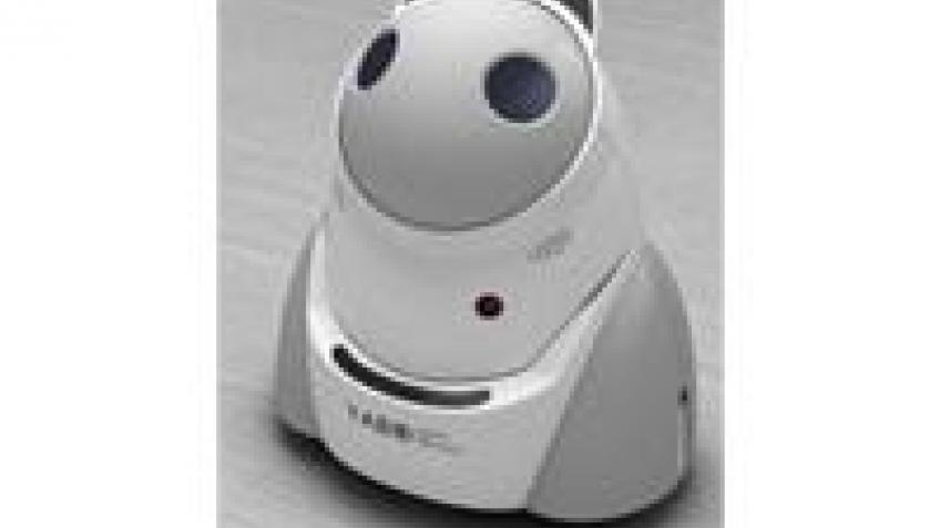 Робот для одиноких