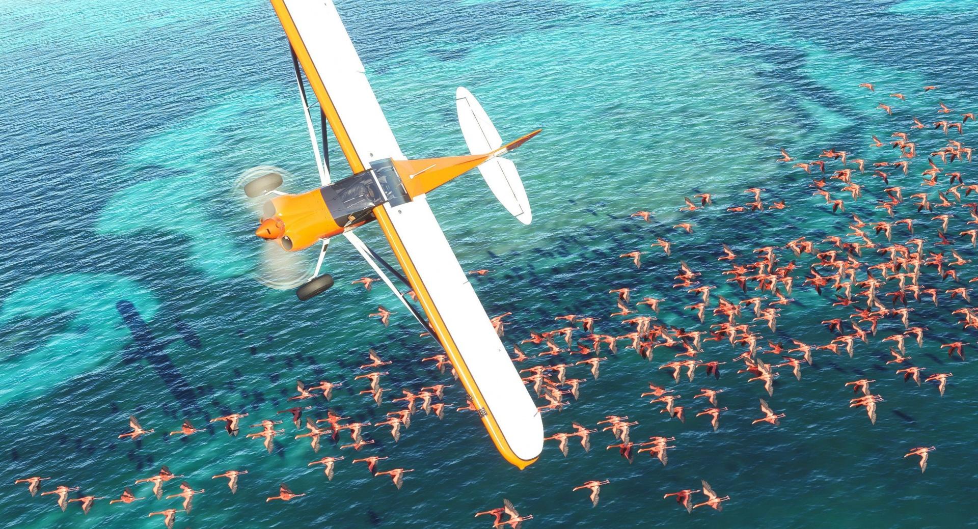 В сети появились полчаса игрового процесса Microsoft Flight Simulator 2020