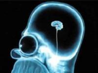 Ученые прочитают мысли