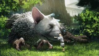 Автор Shadow of the Colossus и The Last Guardian Фумито Уэда ищет издателя для новой игры