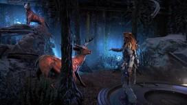 Steamforged Games выпустит настольную игру по Horizon Zero Dawn