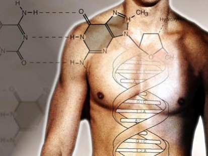 Ученые научатся включать биологические часы