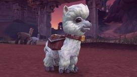 Blizzard выпустила нового «благотворительного» питомца для World of Warcraft