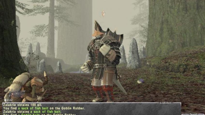 Final Fantasy XI расширяется